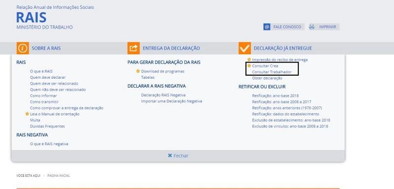Consulta RAIS 2022